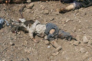 victim_of_Zionist_genocide.jpg