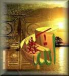 Aaqib Ahmed